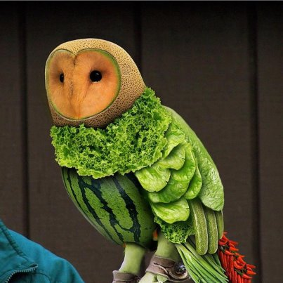 owl made of watermelon