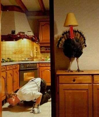 Hiding Turkey