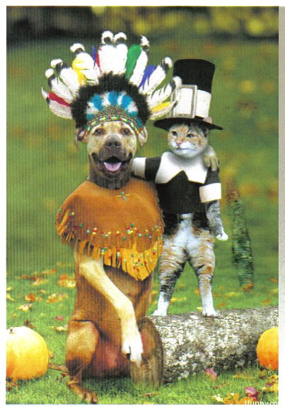 Thanksgiving pet costumes