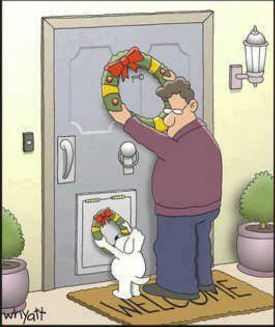 dog hanging christmas wreath