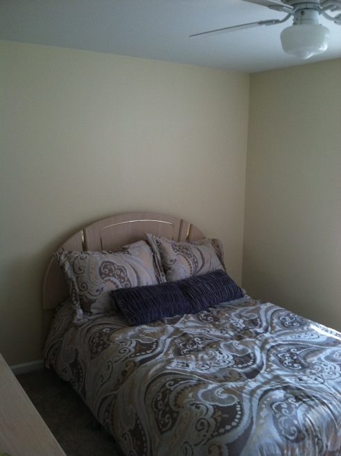 The Master Bedroom... before.